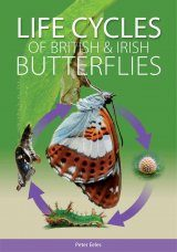 Life Cycles of British & Irish Butterflies