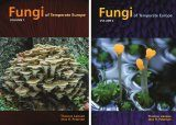 Fungi of Temperate Europe (2-Volume Set)