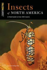 Insects of North America