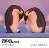 Wildlife Photographer of the Year 2020 Wall Calendar