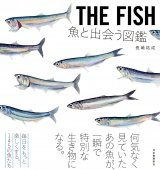 The Fish [Japanese]