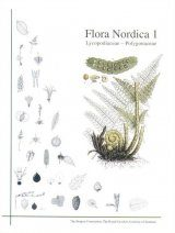Flora Nordica, Volume 1: Lycopdiaceae - Polygonaceae [English]