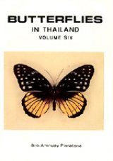 Butterflies of Thailand, Volume 6