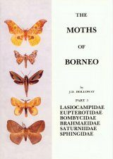 The Moths of Borneo, Part 3