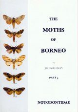 The Moths of Borneo, Part 4