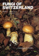 Fungi of Switzerland, Volume 5: Agarics (Part 3)
