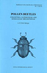 RES Handbook, Volume 5, Part 6a: Pollen Beetles: Coleoptera: Kateretidae and Nitidulidae: Meligethinae