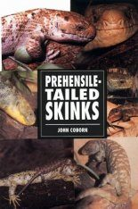 Prehensile-Tailed Skinks
