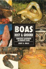 Rosy and Ground Boas