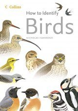Collins How to Identify Birds