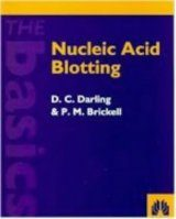 Nucleic Acid Blotting