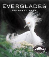 Tiny Folio: Everglades National Park
