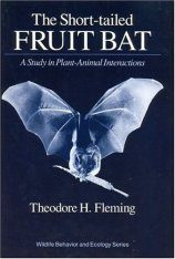 The Short-Tailed Fruit Bat