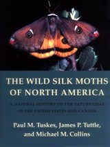 The Wild Silk Moths of North America