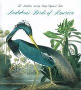 Tiny Folio: Audubon's Birds of America