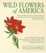 Tiny Folio: Wild Flowers of America
