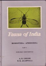 The Fauna of India and the Adjacent Countries: Homoptera, Aphidoidea, Part 6