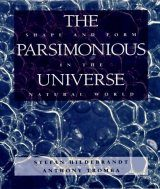 The Parsimonius Universe