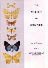 The Moths of Borneo, Part 11