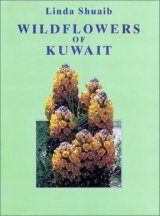 Wildflowers of Kuwait