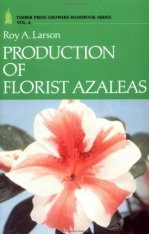 Production of Florist Azaleas