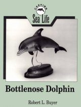 Carving Sea Life: Bottlenose Dolphin
