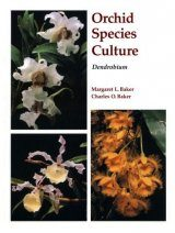 Orchid Species Culture: Dendrobium