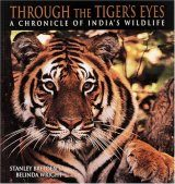 Through the Tiger's Eyes