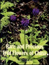 Rare and Precious Wild Flowers of China, Volume 1