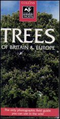 Collins Wildlife Trust Guide: Trees of Britain and Europe
