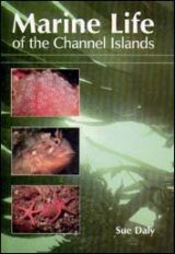 Marine Life of the Channel Islands