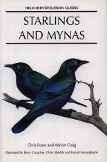 Starlings and Mynas