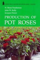 Production of Pot Roses