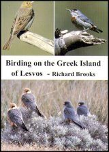 Birding on the Greek Island of Lesvos