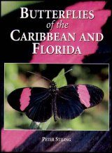 Butterflies of the Caribbean and Florida