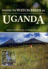 Where to Watch Birds in Uganda