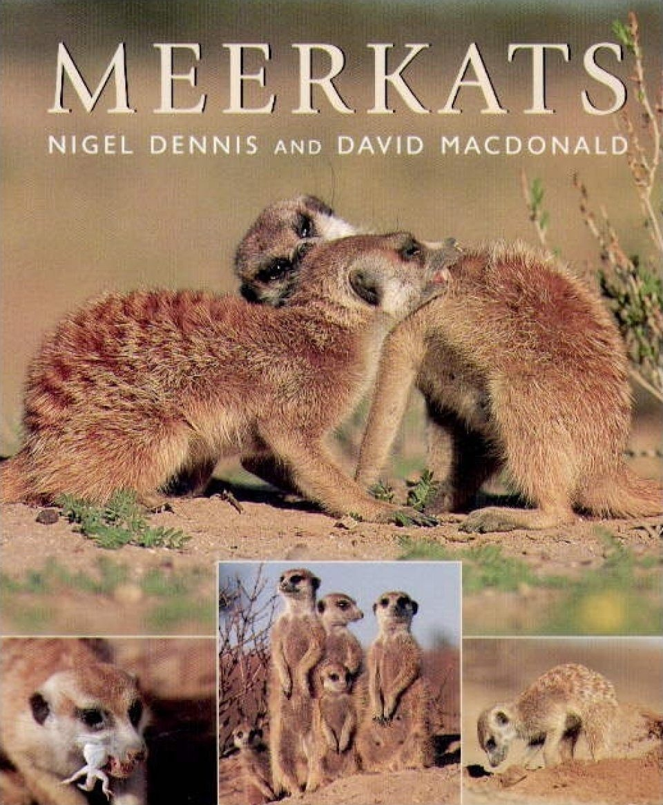 meerkats nigel dennis and david macdonald pdf