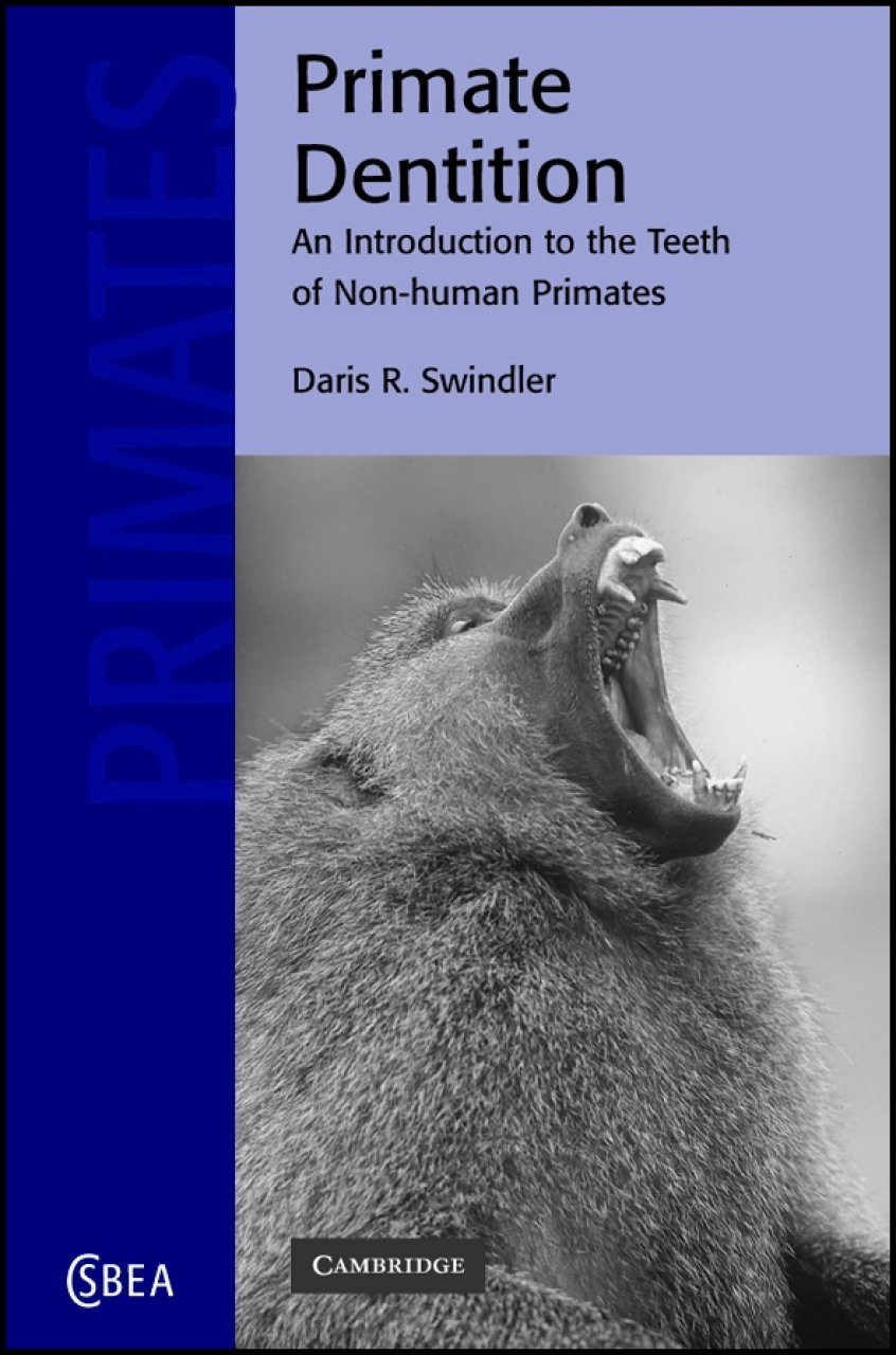 Primate Dentition An Introduction To The Teeth Of Non