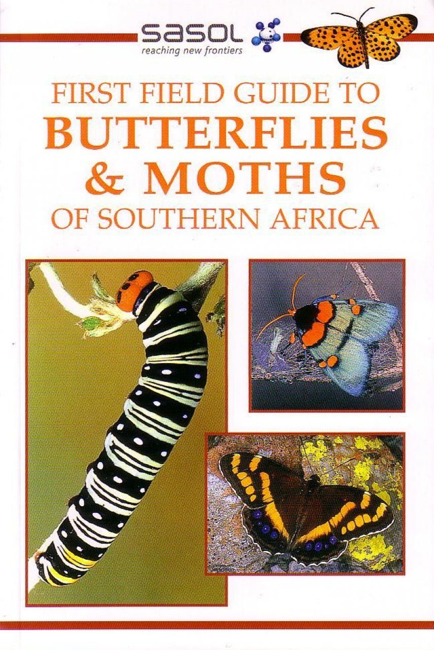 First Field Guide to Butterflies and Moths of Southern Africa: Simon von Noort | NHBS Book Shop - photo#42