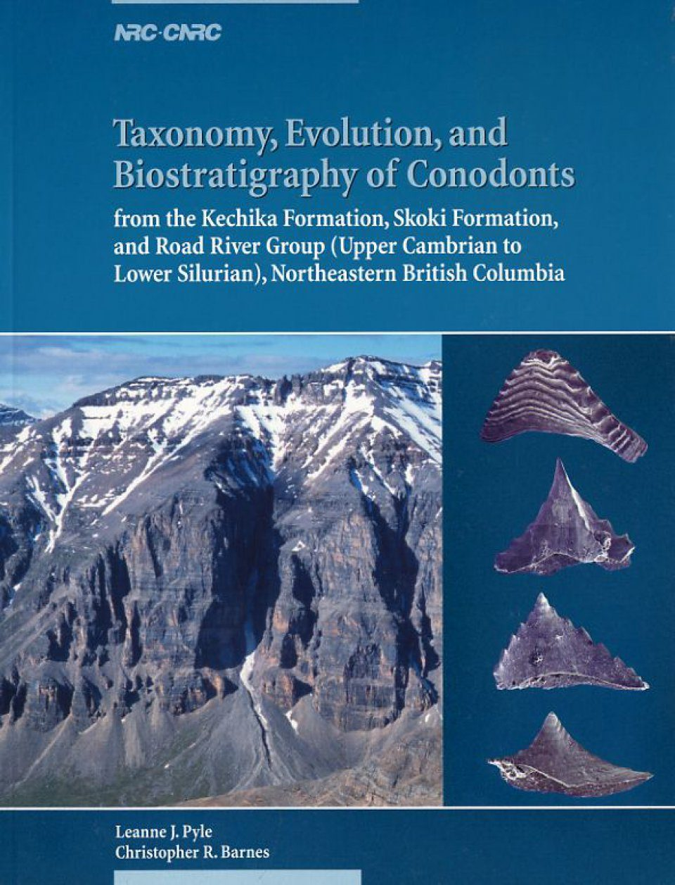 Taxonomy Evolution And Biostratigraphy Of Conodonts Leanne J Pyle And Christopher R Barnes