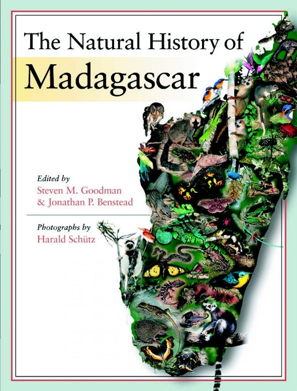 the history of madagascar According to the authors, solofo randrianja and stephen ellis, madagascar: a  short history is the fruit of their combined fifty years of research and writing.