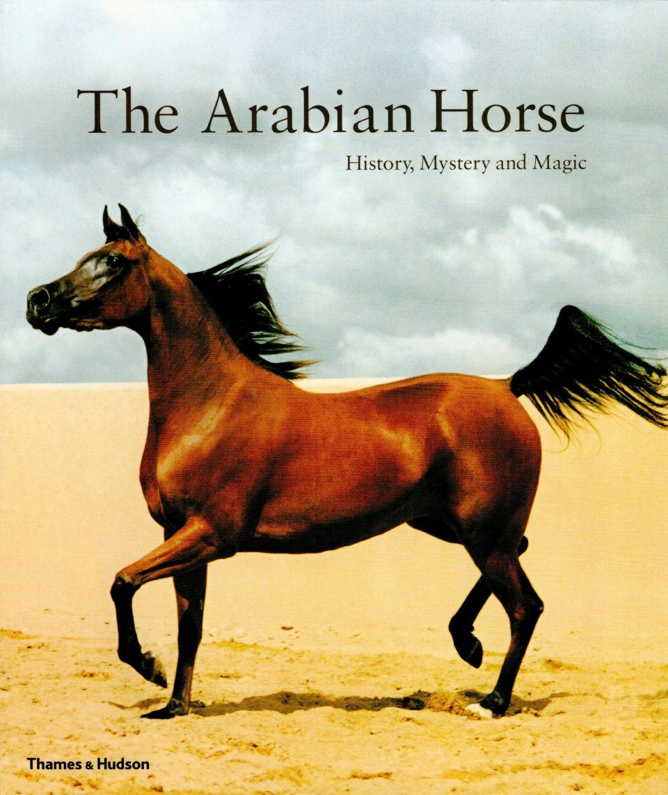 the history and the characteristics of the arabian horse Tracing the history of horse evolution and domestication: new clues to the origins of the horse and the spread of its domestication were presented in 2012 by a.