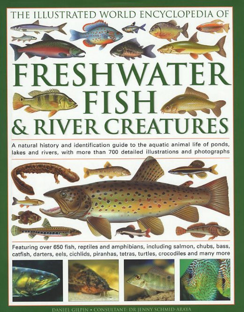 Freshwater fish conservation - The Illustrated World Encyclopedia Of Freshwater Fish And River Creatures