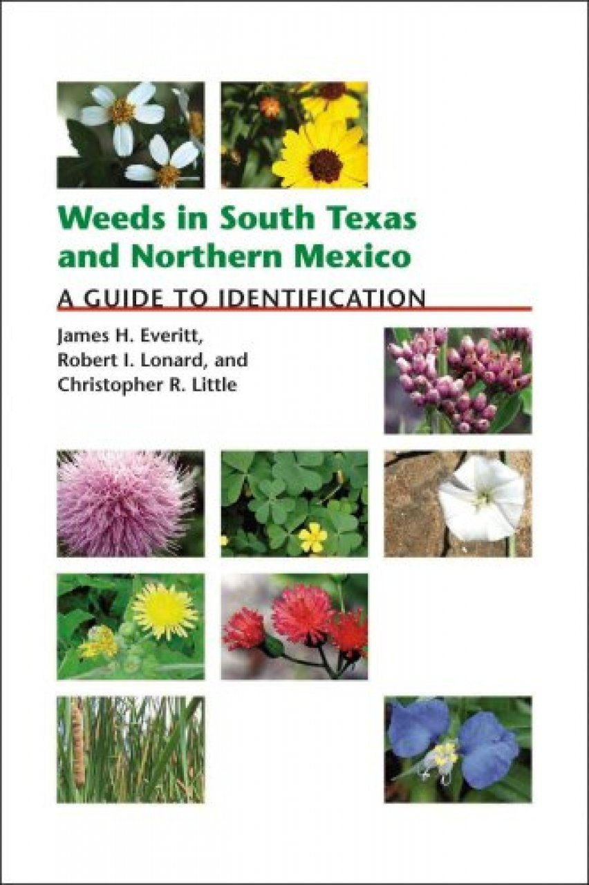 Weeds In South Texas And Northern Mexico: A Guide To