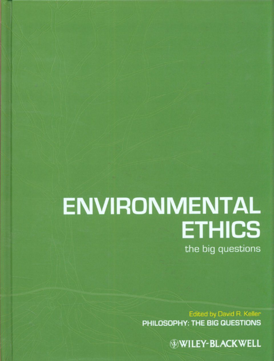 environmental ethics the big questions pdf