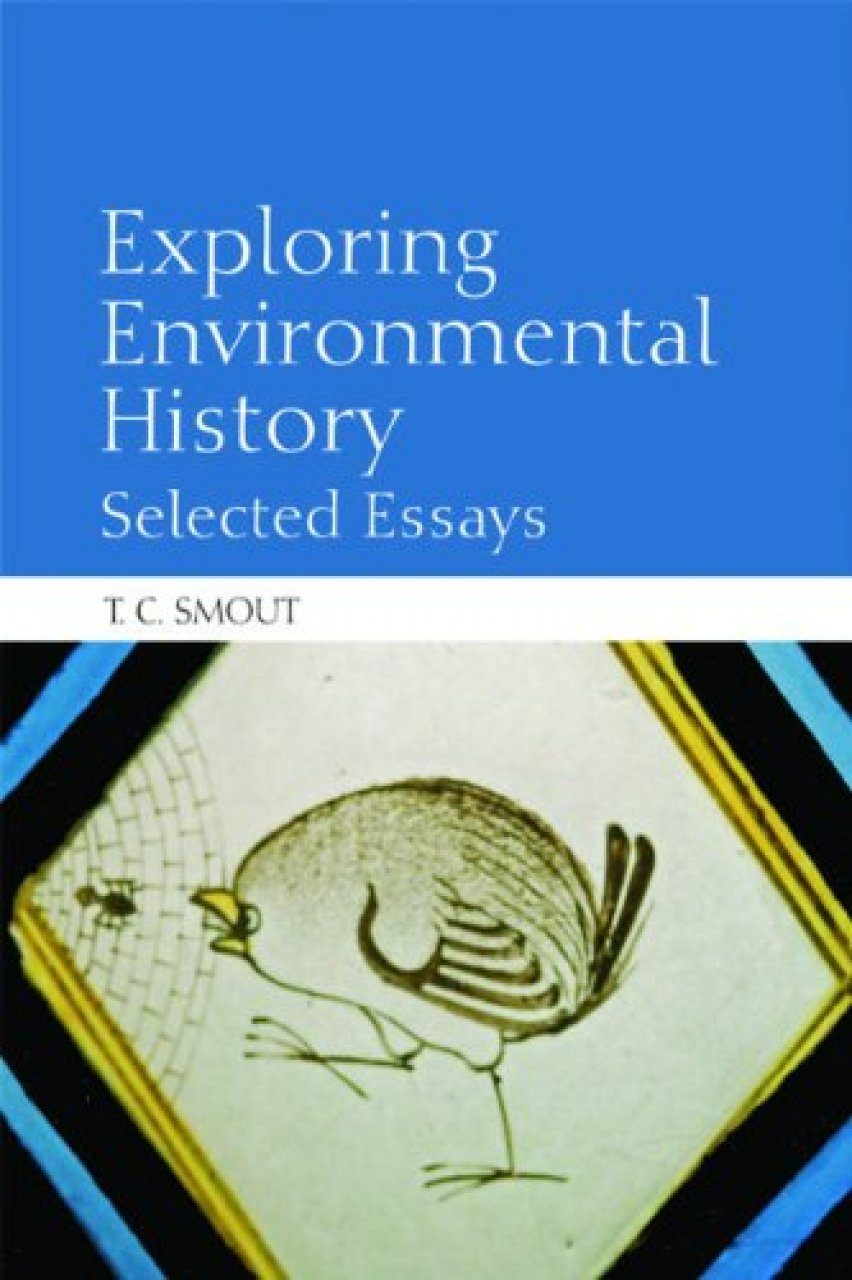 environmental essay history in wood The deterioration and preservation of paper: acids from the environment alkaline wood pulp papers stored under good conditions are long lasting.