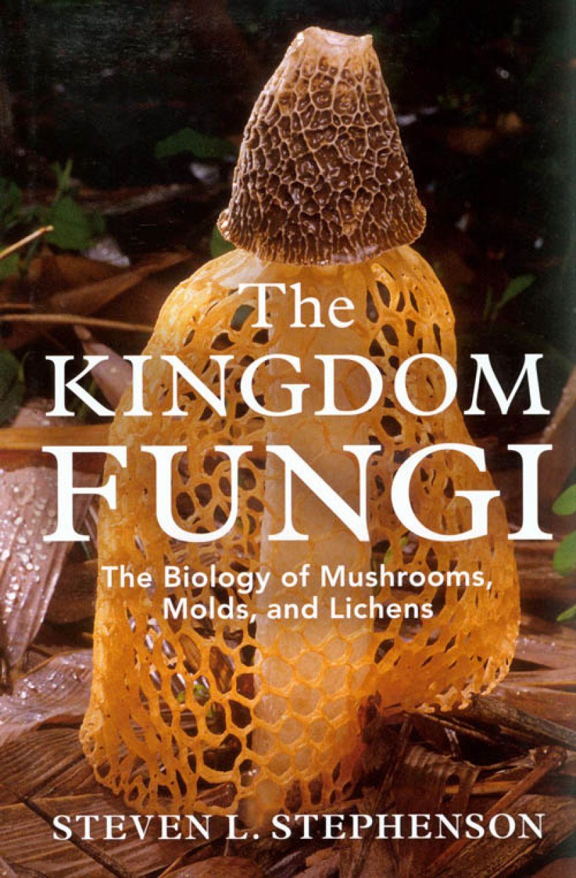 The Kingdom Fungi The Biology Of Mushrooms Molds And