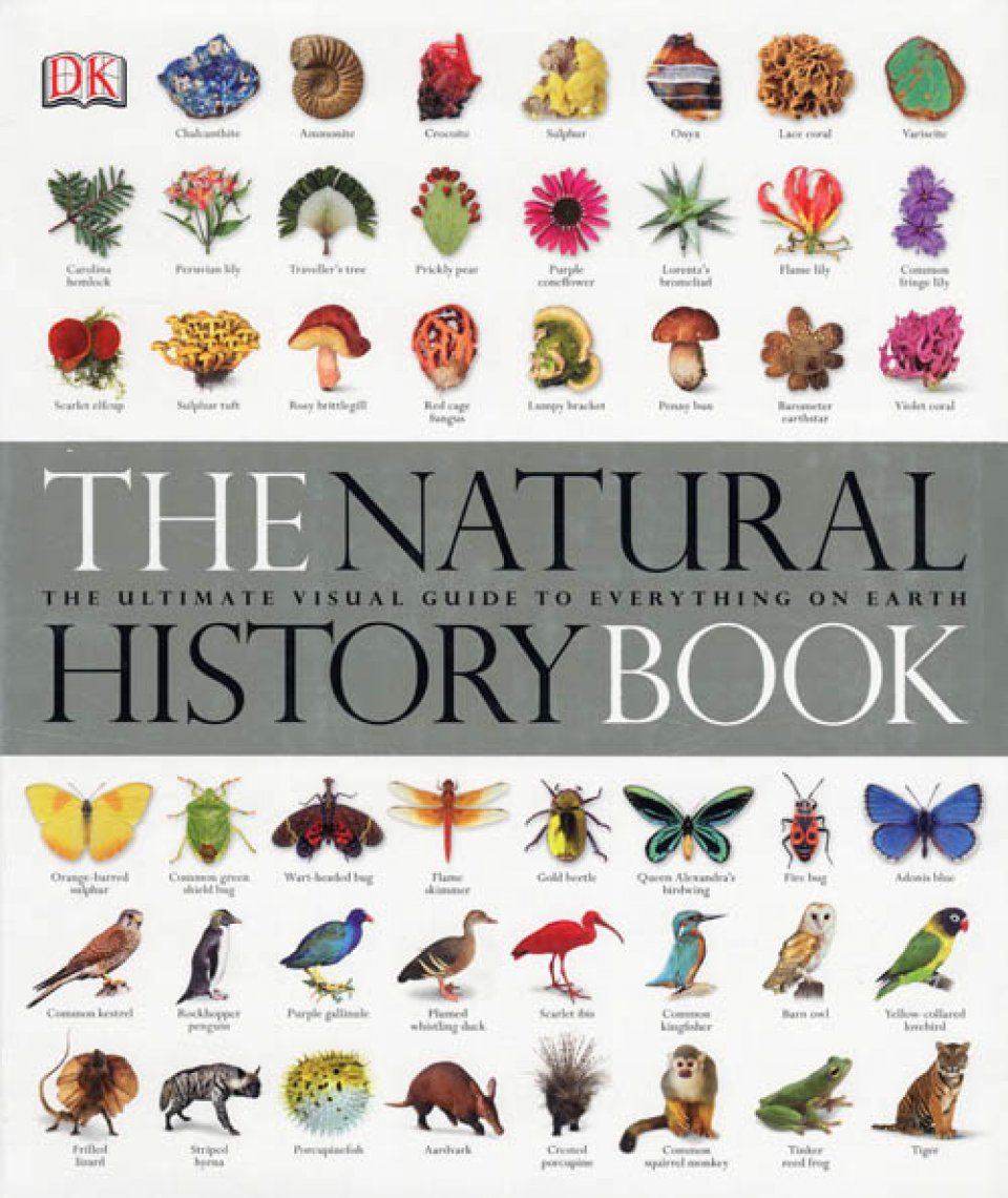 the natural history book  the ultimate visual guide to everything on earth