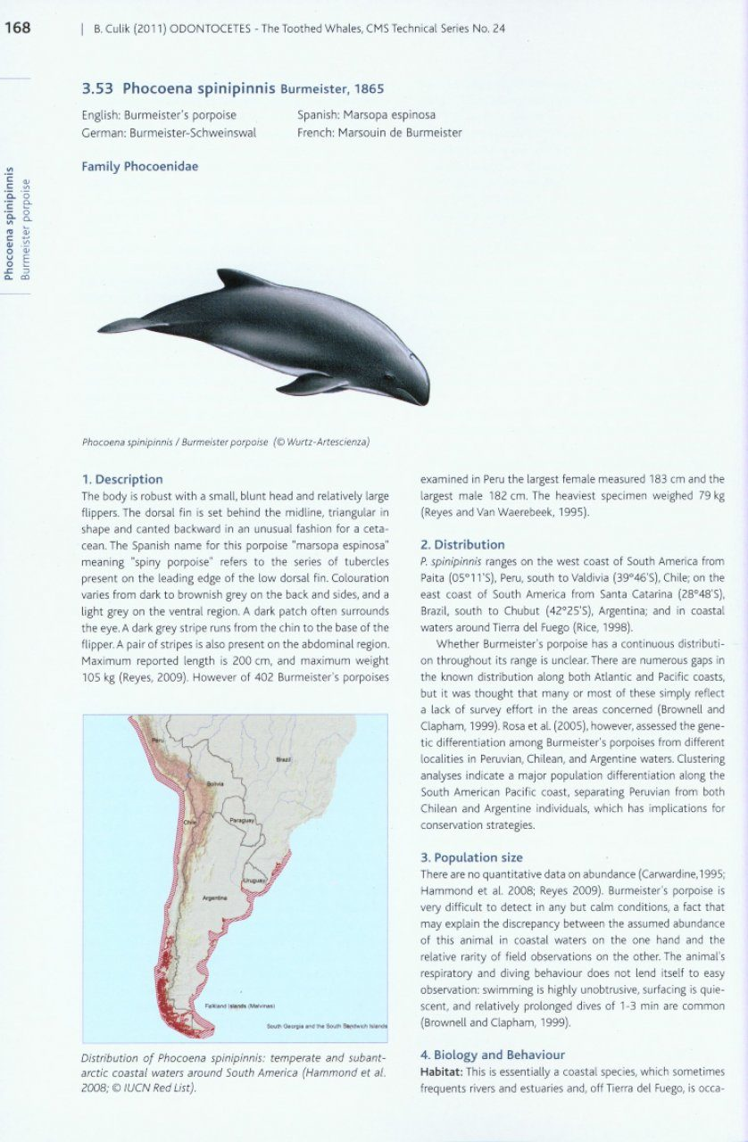 Odontocetes: The Toothed Whales - 162.9KB