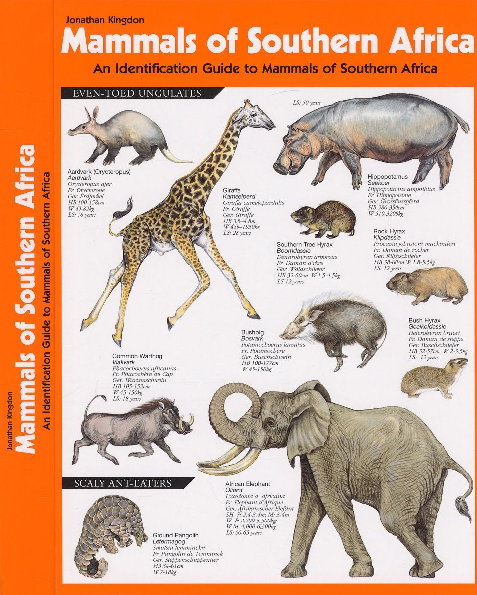 Mammals of Southern Africa: An Identification Guide to ...